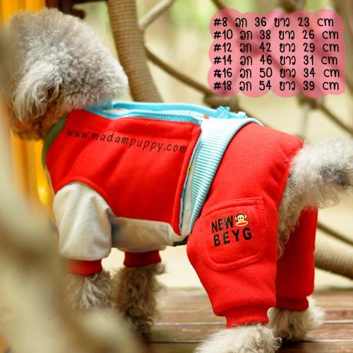 (พร้อมส่ง) ชุดกันหนาวสุนัขสี่ขา พอลแฟรงค์ สีแดง