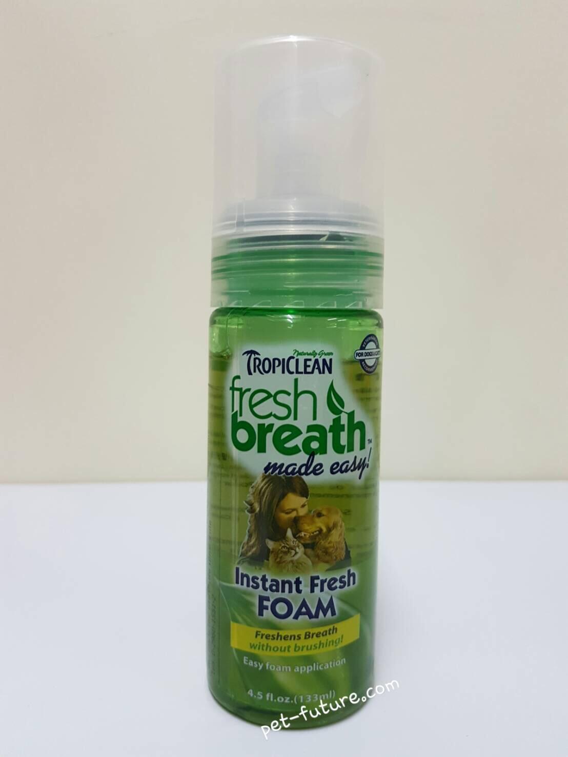 FRESH BREATH instant fresh foam