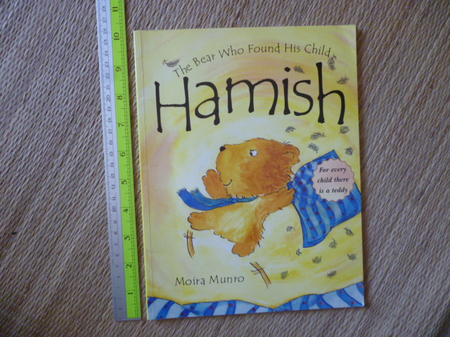 HAMISH (The Bear Who Found His Child/ Paperback)