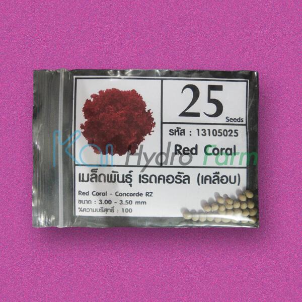เมล็ดพันธุ์ Red Coral (เคลือบ) 25 เมล็ด