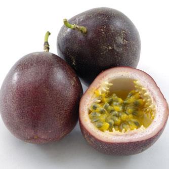 Possum Purple passionfruit ( เสาวรส,กะทกรก สีม่วง )
