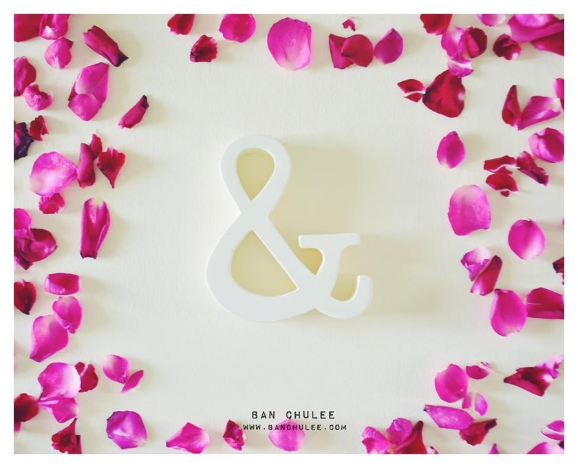 Shredded Wheat - สัญลักษณ์ & (Ampersand) ตั้งโต๊ะ งานไม้สัก โทนสีครีม