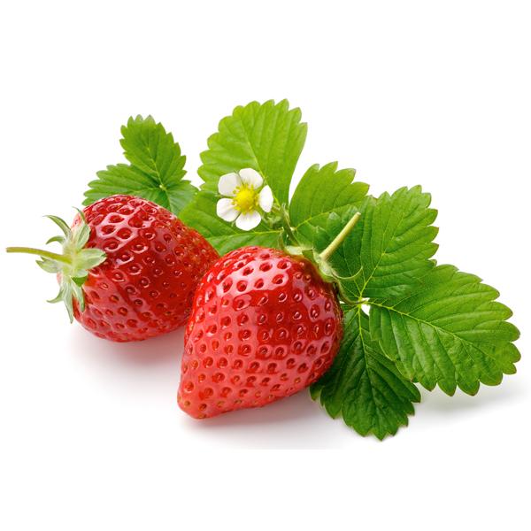 สารสกัดสตรอเบอรี่ (ผล) (Strawberry extract)