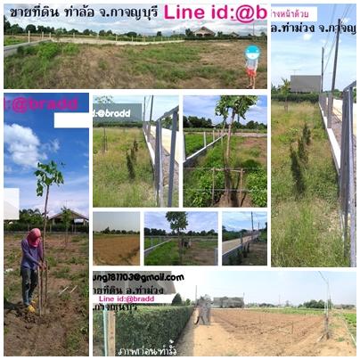 ที่ดิน, ทีดินแบ่งขาย, ที่ดิน จ.กาจญบุรี, กาจญบุรี, ที่ดินพร้อมรั้ว,ที่ดินแบงขาย กาจญบุรี,ที่ดินกาจญบุรี,ทีดินปลูกบ้าน กาจญบุรี