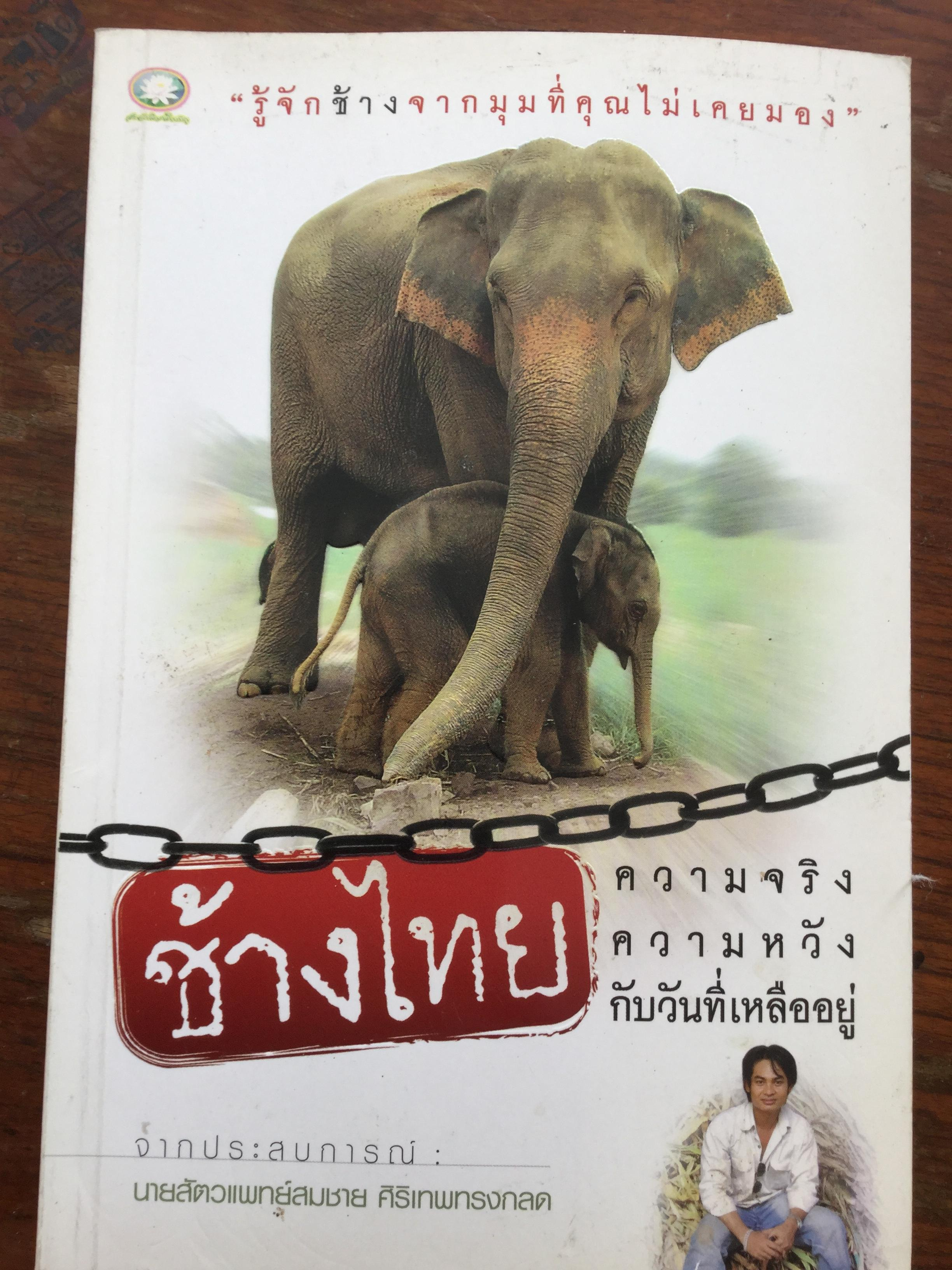 ช้างไทย ความจริงความหวังกับวันที่เหลืออยู่. รู้จักช้างจากมุมที่คุณไม่เคยมอง. จากประสบการณ์ : นายสัตวแพทย์สมชาย ศิริทรงกลด