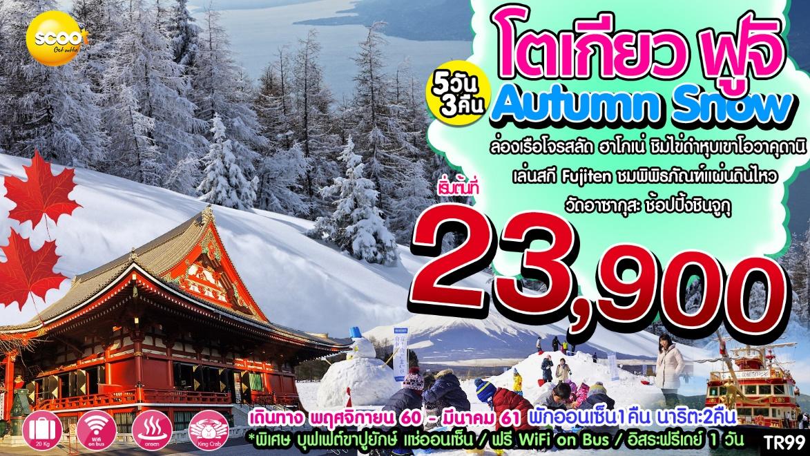 Autumn Snow โตเกียว ฟูจิ 5วัน 3คืน พ.ย 60- มี.ค 61