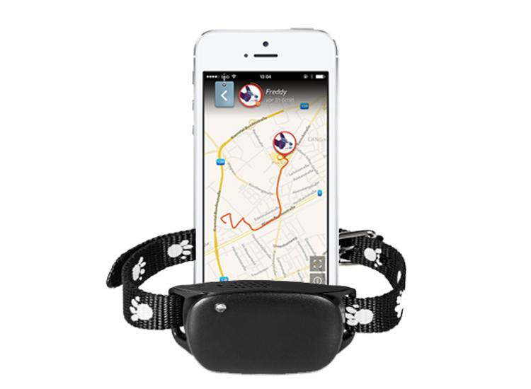 GPS dog613 ติดตามสุนัข ติดตามสัตว์เลี้ยง