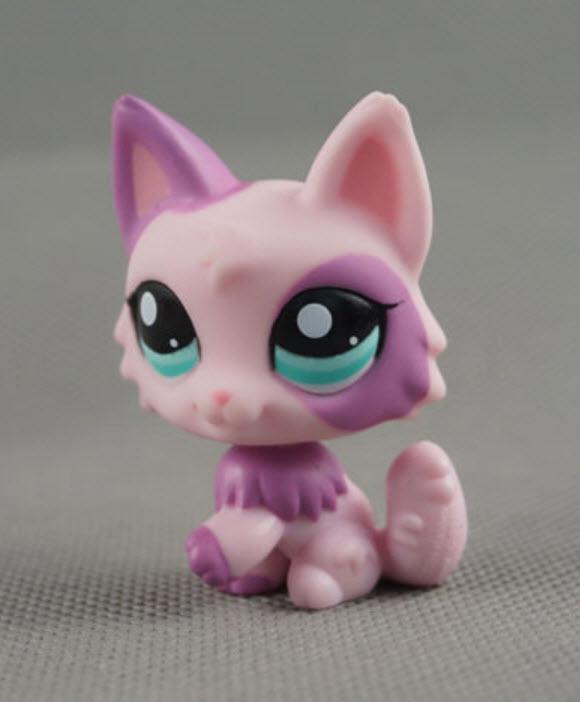 แมว Wolf Persian สีชมพู-ม่วง #2100 (หายาก)