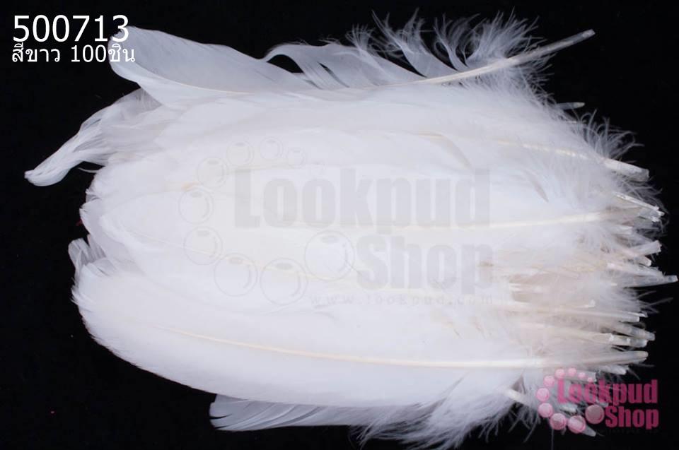 ขนนก(ก้าน) สีขาว 100ชิ้น