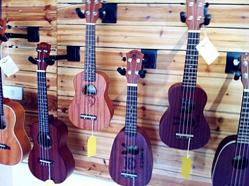 ร้านอูคูเลเลเล่ ukulele shop Phitsanulok