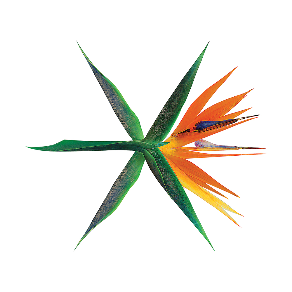 [Pre] EXO : 4th Album - The Wars (Korean Ver.) (Random Ver.) +Poster